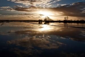 Powódź na równinie Somerset (fot. Mark Robinson/CC BY-NC 2.0/Flickr.com)